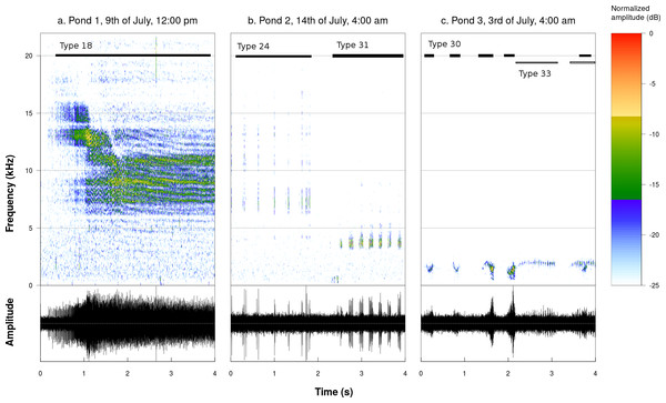 Spectrograms and oscillograms of chosen sound productions illustrating the acoustic diversity found in the studied ponds (Fourier window length: 1,024 samples, frame overlap: 50%, window type: Hanning).