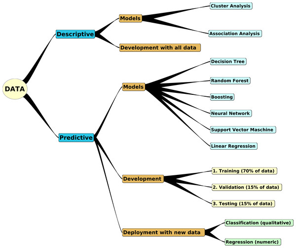 Building of descriptive and predictive models.