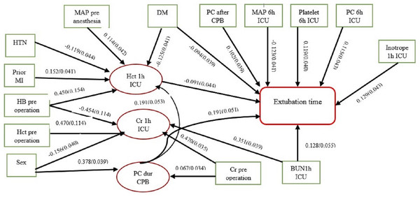 Causal network diagram of influenced factors of extubation time.