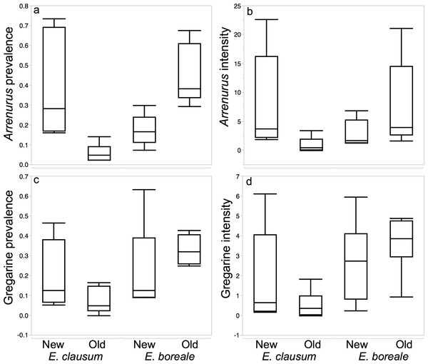 Boxplots demonstrating differences in measures of parasitism between host species and sites types while testing for the Enemy Release Hypothesis in a native damselfly species with an expanding range.