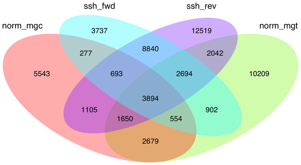 Venn diagram showing the extent of redundancy between the different libraries constructed in the present work: norm_ mgc, normalized control library; norm_mgt, normalized exposed library; ssh_fwd, SSH forward library; ssh_rev, SSH reverse library.