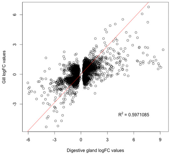 Correlation between paired logFC values calculated for transcripts identified in digestive gland and gill tissues between exposed and control treatments.