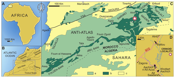 Geographical and geological setting of the eastern Anti-Atlas Mountains, Morocco, showing the type locality of the new species (indicated by a star) close to the village of Battou.