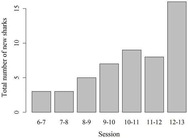 Total number of previously unidentified sharks encountered in each hourly survey session from 6 am to 1 pm.