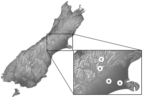 Location map for Costelytra zealandica and C. brunneum sample sites.