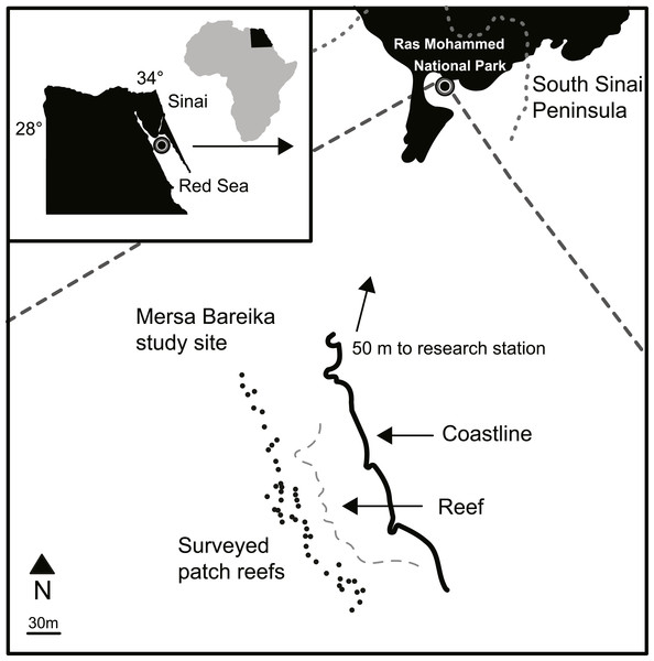 Study site map.