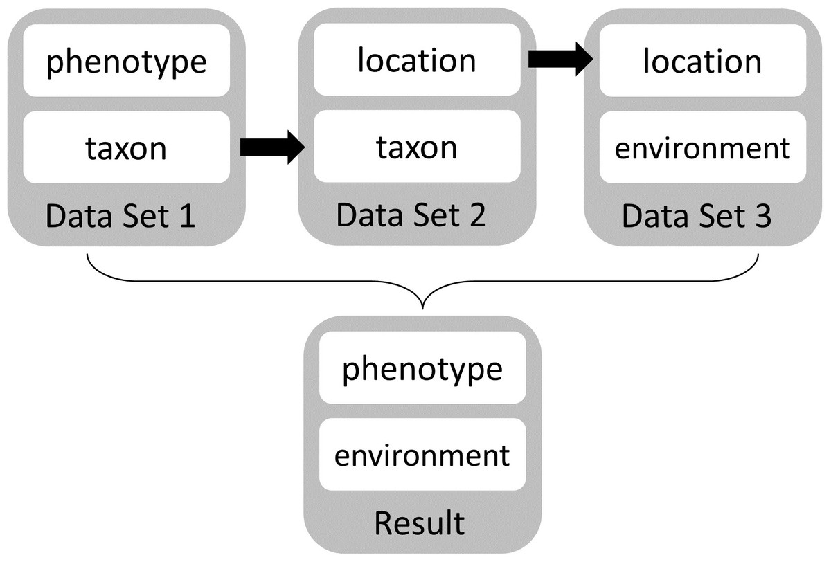 Emerging semantics to link phenotype and environment [PeerJ]