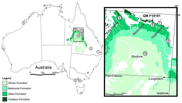 Locality map for Australian eurypodan thyreophoran fossils.