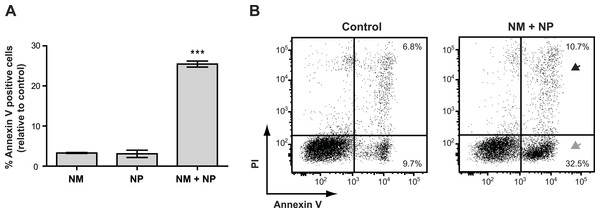 Annexin V staining of cancer cells after treatment with purified nonribosomal peptides.