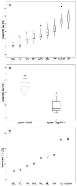 Coefficients of variation in sperm morphometry parameters.