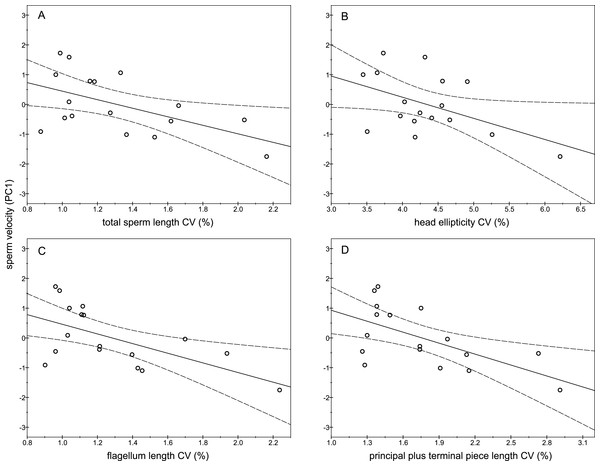 Relationships between sperm velocity and the intramale coefficient of variation in sperm size.