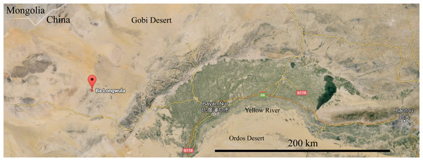 Location of Balongwula (巴隆乌拉), Nei Mongol, China where IVPP V22530 was discovered.