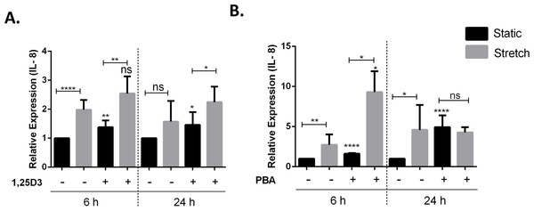 Treatment with 1,25D3 and PBA differentially affects stretch mediated changes in pro-inflammatory cytokine IL-8 gene expression.