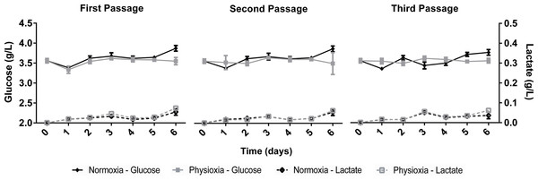 Glucose uptake and lactate concentration in the supernatant of NPCs grown in physioxia (gray lines) and normoxia (black lines) throughout the first, second, and third passages.