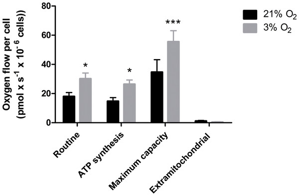 Oxygen uptake quantification of NPCs grown either in physioxia (gray bars) or normoxia (black bars) by high-resolution respirometry, providing the following parameters: routine respiration, oxygen consumption dedicated to ATP synthesis, maximum mitochondrial capacity, and extra-mitochondrial respiration.