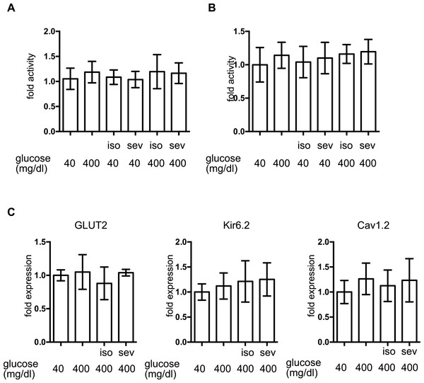 The effect of volatile anesthetics on molecular aspects of GSIS in MIN6 cells.
