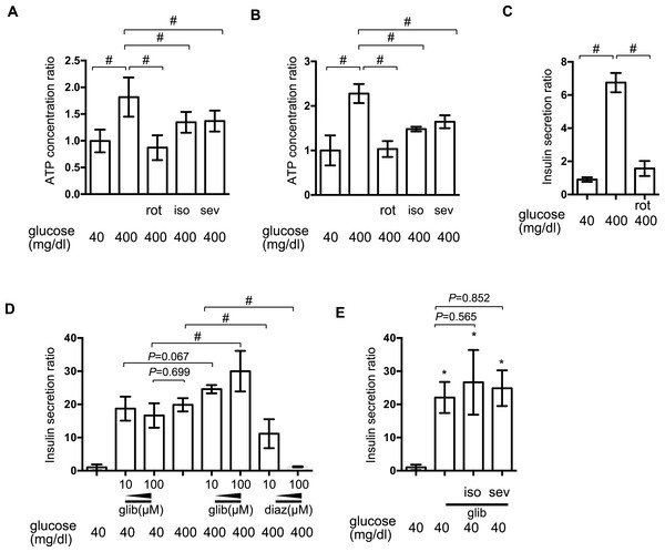 The effect of volatile anesthetics on intracellular signaling processes involved in GSIS.