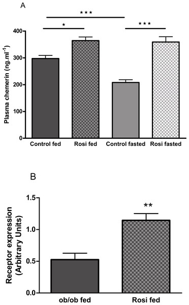 The effect of fasting and rosiglitazone on plasma chemerin concentration (A) and RARRES2 expression in inguinal adipose tissue (B) in female C57Bl/6J ob/ob mice.