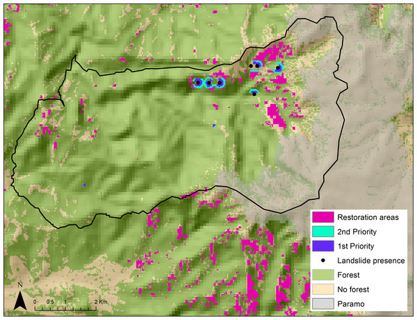 Restoration priority areas that lack forest cover and have high landslide risk and high endemic and small-range bird concentrations (first, second, and general priority) in the Rio Blanco Reserve.
