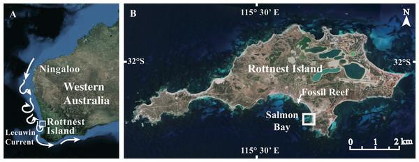 Site maps.