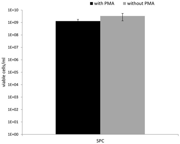 Number of viable cells (determined using SPC) in PMA-treated (50 µM) and untreated samples.