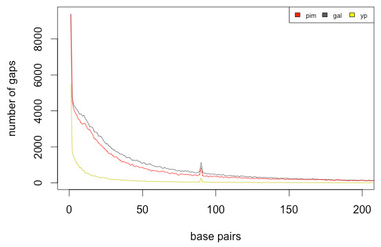 Putative deletion size distribution in combined assemblies.