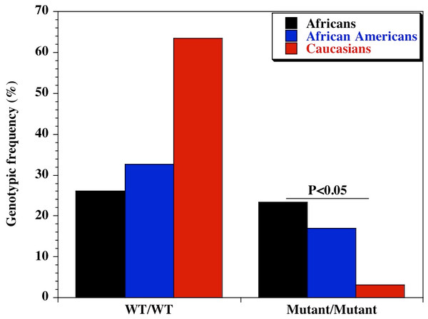Genotypic distribution of CD209 gene promoter polymorphism (SNP-336 A/G; rs4804803) in Caucasian, African American and African healthy controls.