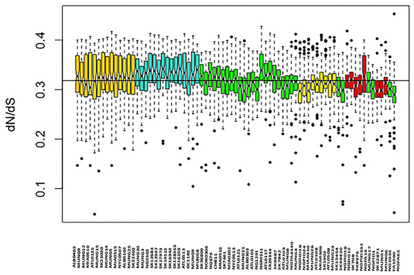 Boxplot of mean dN/dS ratio pair-wise comparison of core genes of each of the strains of N. gonorrhoeae in the sample set.