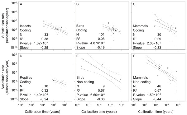 Linear regressions of log-transformed rate estimates against log-transformed calibration times used for their estimation for different taxonomic groups (insects (A), reptiles (D), birds (B, E), and mammals (C, F)) and mitochondrial marker types (coding (A–D) and non-coding (E, F)).