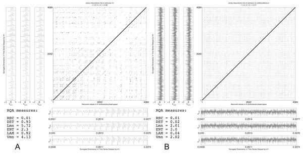 Recurrence plot: original vs. randomised signal.