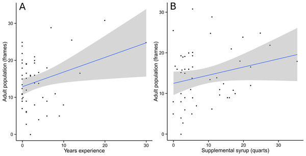 Adult population was positively correlated with beekeeper years of experience (A) and supplemental syrup feeding (B).
