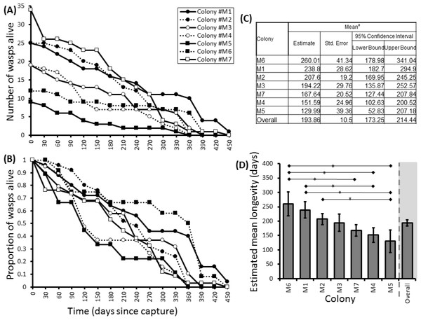Survival details of seven colonies of P. canadensis over 450 days.