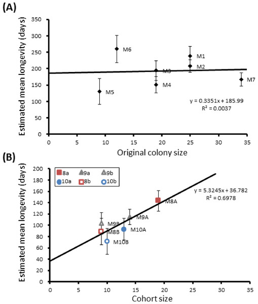 Mean longevity per colony against colony size.