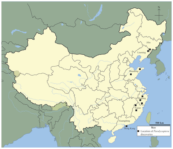 Chinese Paralycoptera localities.