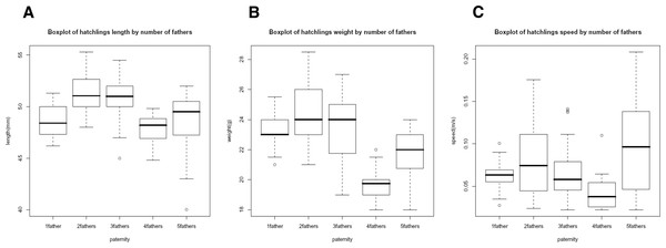 Box plot of morphological traits correlations.