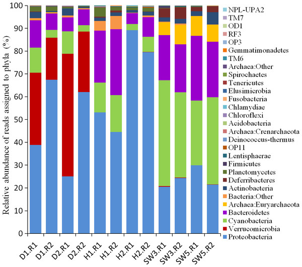Taxonomic classification of microbial reads in sponges and seawater at the phylum level.