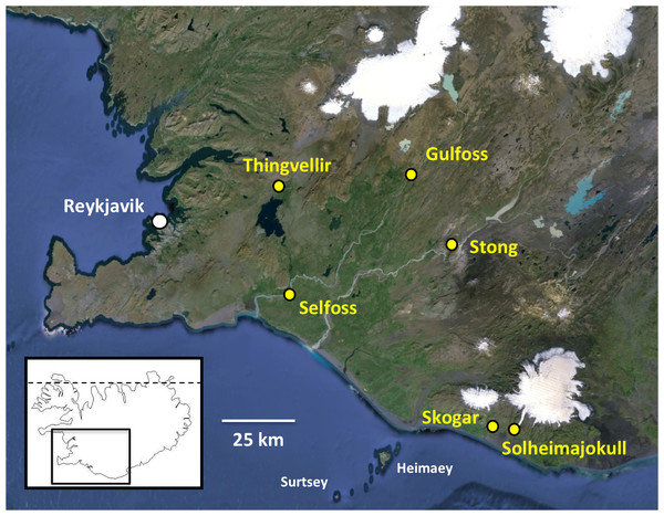 Populations of Platanthera hyperborea sampled in southwest Iceland during the present study.