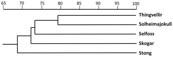 Dendrogram showing morphometric relationships of the five study populations of P. hyperborea.