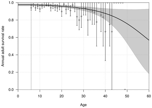 Age-dependent adult survival rate of northern royal albatross at Taiaroa Head, as estimated from the most parsimonious model.