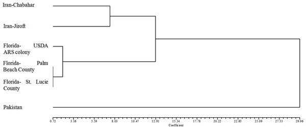 Dendrogram plotted by UPGMA method based on squared Euclidean distance of Diaphorina citri populations.