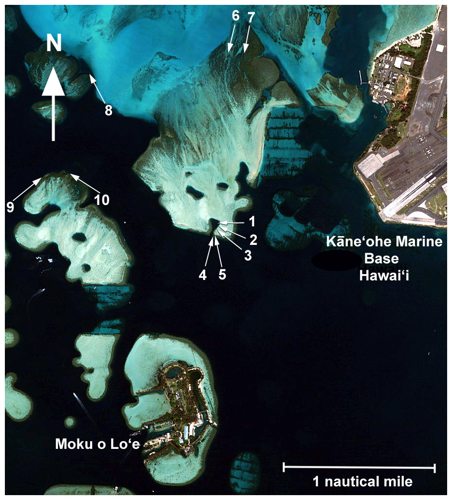 Comparison Of Methods Used To Estimate Coral Cover In The Hawaiian