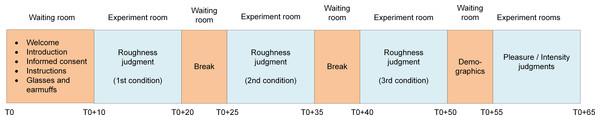 Schematic representation of the procedure.