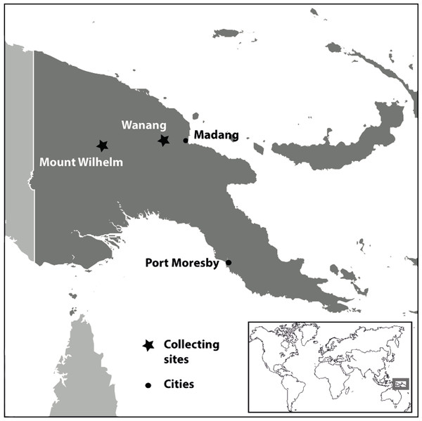 Location of collecting sites in Papua New Guinea.