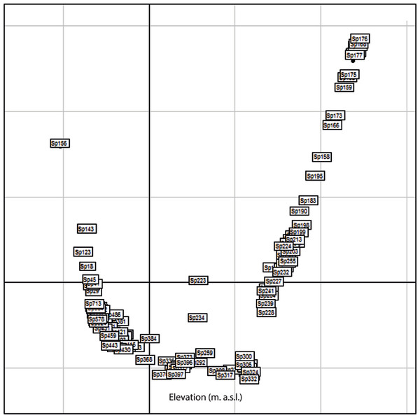 Factorial Correspondence Analysis (FCA) of the arrangement of morphospecies (x-axis) along the elevational gradient.