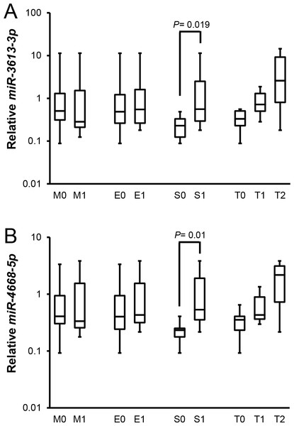 Relationships between candidate miRNAs levels and pathological parameters in patients with IgAN according to Oxford classification.