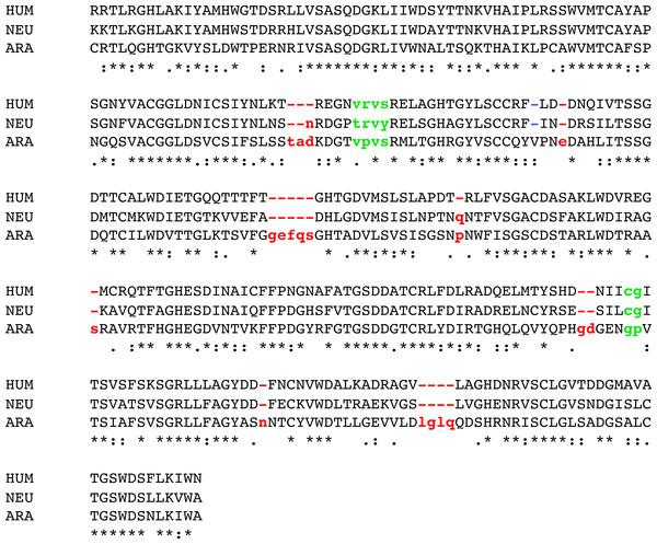 Alignment of three GNB1 ortholog sequences.