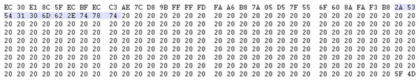 First 11 bytes of embedded content.