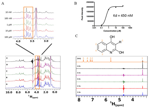 Saturation transfer difference (STD) NMR of SUMO-PqsR-C87 interaction with DHQ.