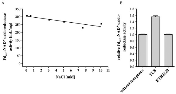 Fdred:NAD+ oxidoreductase activity of membranes of C. ljungdahlii as a function of Na+ concentration (A) and of inverted membrane vesicles in the presence of different ionophores (B).