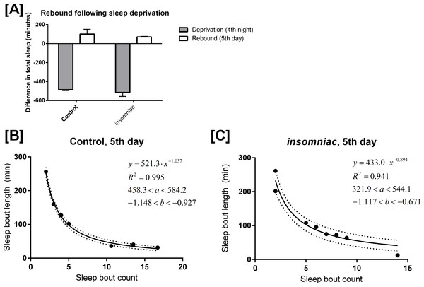 Mathematical model applied to sleep rebound following deprivation.